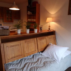 Appart-hôtel studio 3/4 pers Alliey & Spa
