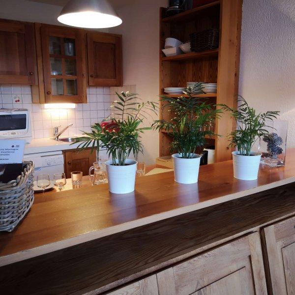 Studio coin cuisine séjour Pré des Ors & Spa location serre chevalier